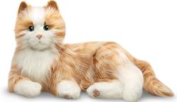 AOSFCare Pet Cat