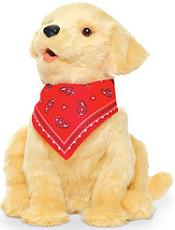 AOSFCare Pet Dog